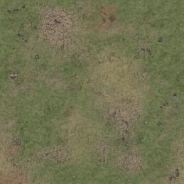 Tapis Grassy Fields 3'x3'