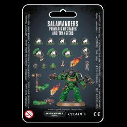 SALAMANDERS: AMÉLIORATIONS...
