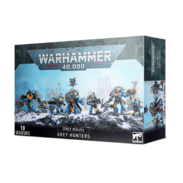 BOITE SPACE WOLVES PACK GREY HUNTERS / BLOOD CLAWS / WOLF GUARD