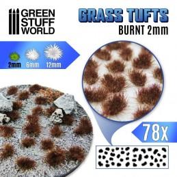Touffes d'herbe 2mm Brûlée