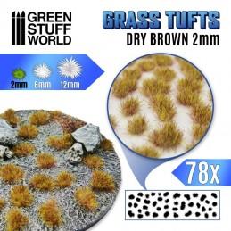 Touffes d'herbe 2mm Brun sec