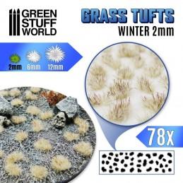 Touffes d'herbe 2mm Blanc...