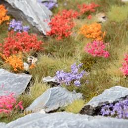 Set de fleurs du jardin