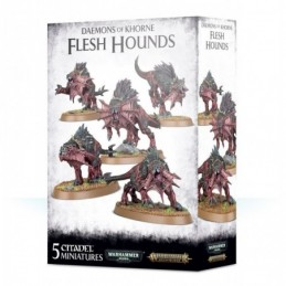 Boite DAEMONS OF KHORNE FLESH HOUNDS