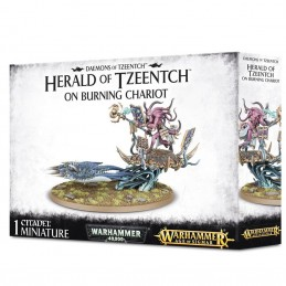 Boite HERALD OF TZEENTCH ON BURNING CHARIOT