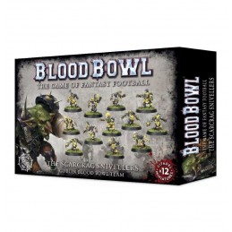 Boite BLOOD BOWL EQUIPE SCARCRAG SNIVELLERS
