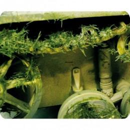 Exemple Effet d'environnement herbe écrasée