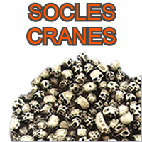 Socles Cranes