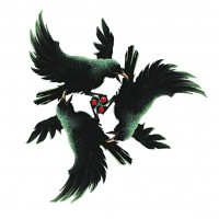 Kage Kaze Zoku (Shadow Wind Clan)